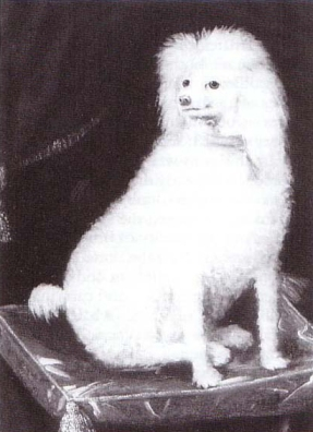 Boye, possibly painted by Rupert's sister Louise.