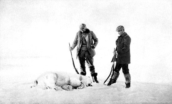 Fraenkel and Strindberg with a dead polar bear. Some blame their deaths on Trichinosis caused by eating raw bear. Others blame their deaths on being eaten raw by bears.